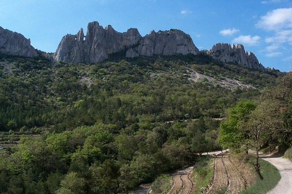 dentelles montmirail cote du rhone france walks
